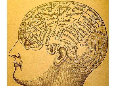 Stimulate Memory Crossword