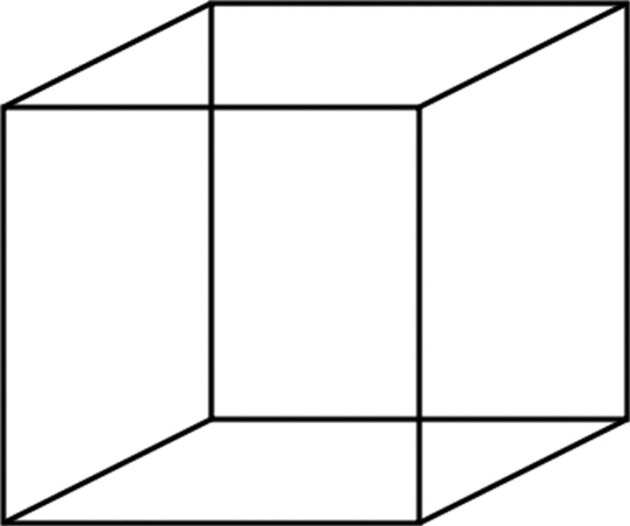 ... then, addiction is like a Necker Cube - Understanding Addiction