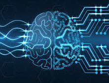 input-output brain